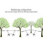 comparison2dogs1000w714h-opt